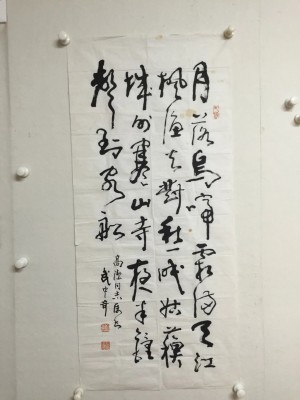 武中奇精品(41X90)软片